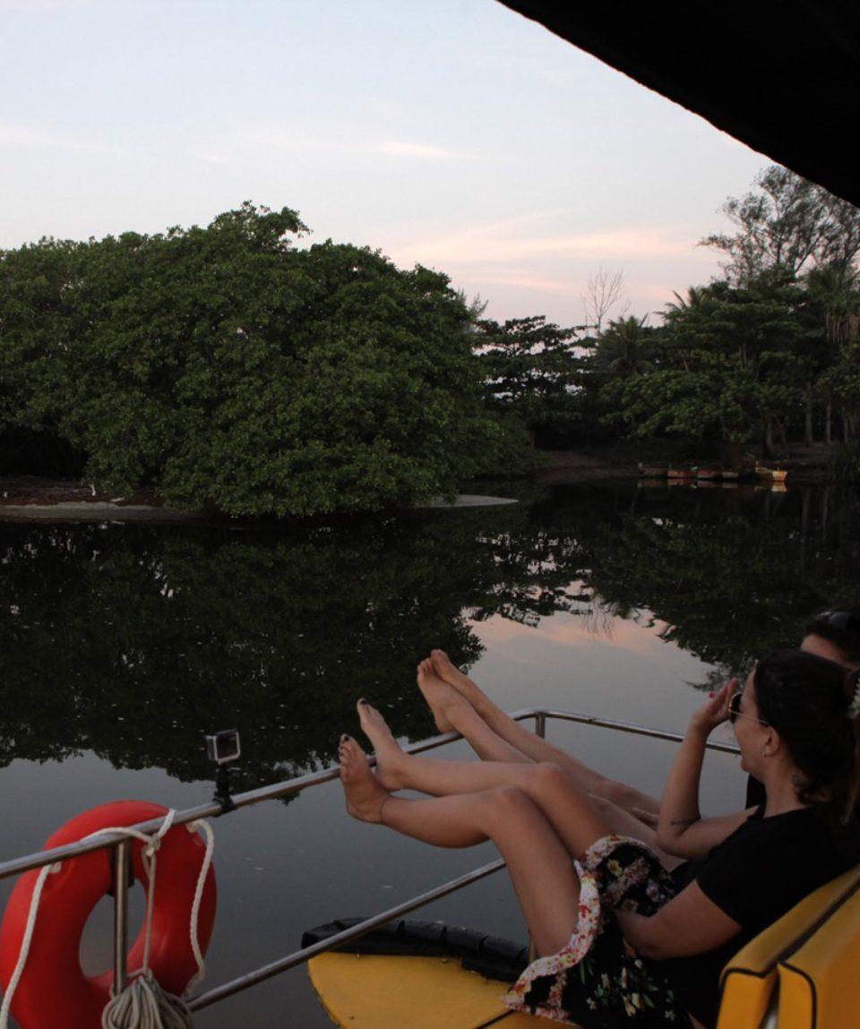 Pantanal Carioca